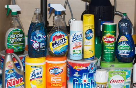 dangerous household chemicals household dangers for birds