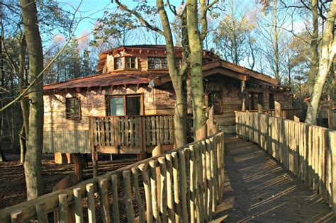 the canopy treehouses center parcs tree houses blue forest
