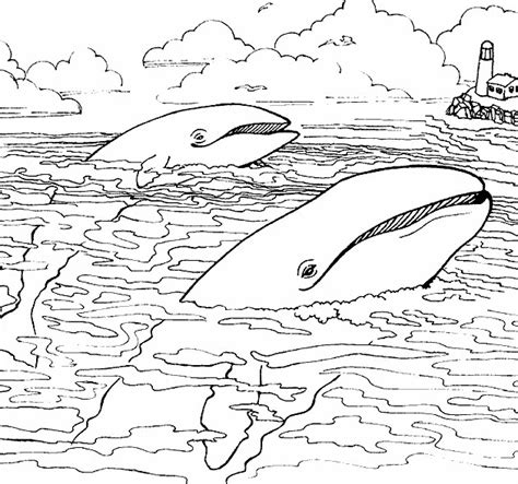 coloring pictures of animals in the sea free sea animals color coloring pages