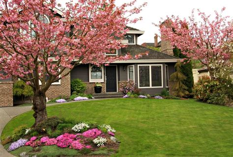 front yard with dogwood trees in bloom homeyou - Trees To Plant In Front Yard
