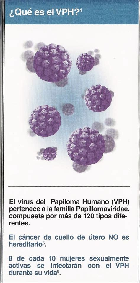 que es papiloma virus related keywords que es papiloma que es papiloma virus related keywords que es papiloma