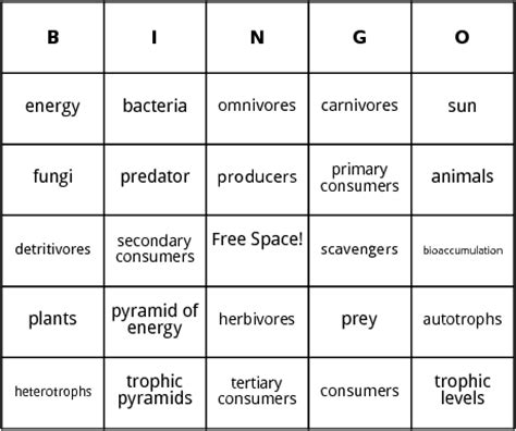 food chain bingo by bingo card template