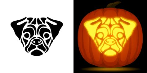 pug pumpkin carving stencil free pdf pattern to download