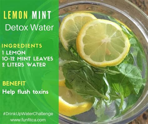 Lemon Water With Mint Detox by 128 Best Images About Funfit Water On Bottle