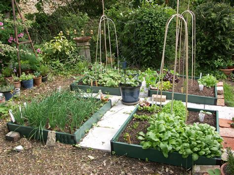 small potager garden design google search gardens pinterest gardens