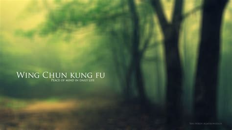 wing chun wallpapers  background pictures
