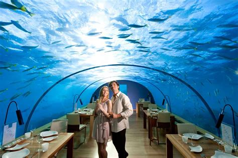 underwater bedroom in maldives ithaa the underwater restaurant in the maldives 171 twistedsifter
