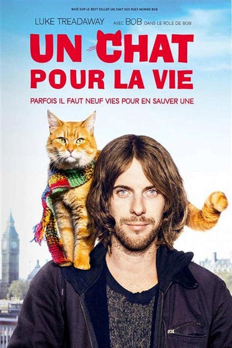 un chat pour la vie 2016 the movie database tmdb - 404378 Un Chat Pour La Vie