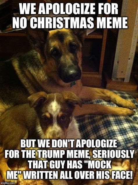 Christmas Dog Meme - image tagged in the late lol dog christmas meme lol dog