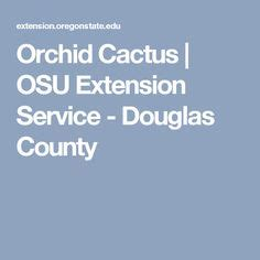 Douglas County Extension Office by 1000 Ideas About Orchid Cactus On Cactus