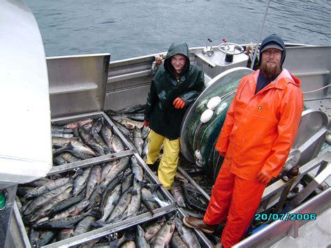 alaska fishing boat summer jobs pay fishing in alaska salmon 101 freewheelings
