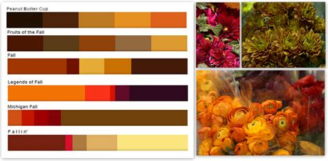 autumn color fall colors palettes pennock floral