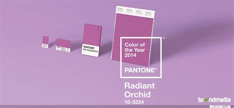 pantone 2014 color of the year