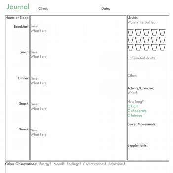 Food Journal Template Food Journal Templatefood Dairy Templatejpg Food Log Template 15 Diary Template Docs