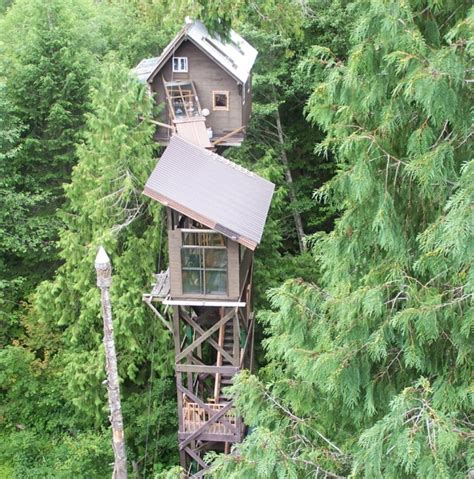 cedar creek treehouse washington up in the trees america travelling here