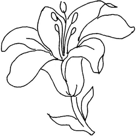 imagenes bonitas para dibujar pintadas dibujos de flores para pintar y colorear