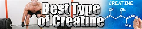 7 types of creatine best type of creatine mr supplement australia