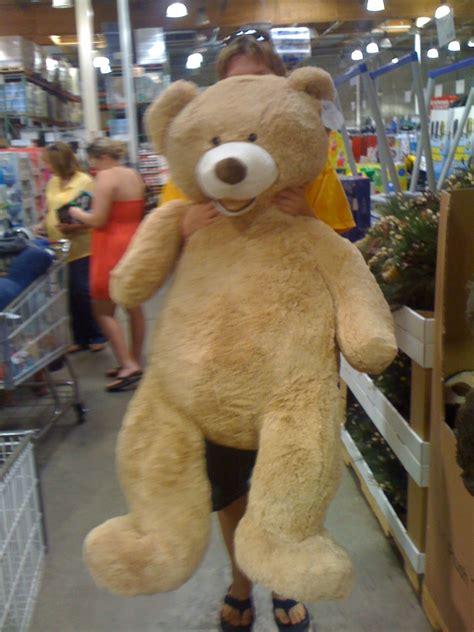 walmart big bears teddy by mikedw96 on deviantart