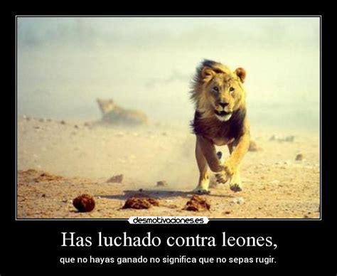 imagenes de leones fuertes has luchado contra leones desmotivaciones