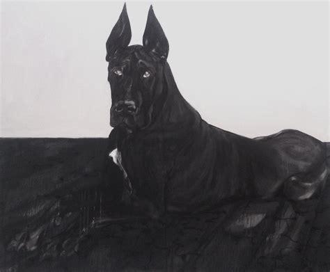 black great dane puppy black great dane photo and wallpaper beautiful black great dane pictures