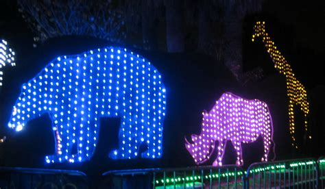 zoo lights cost stiletto city sparkling la zoo lights