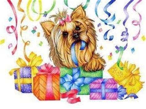 happy birthday yorkie images yorkie birthdays and pictures on