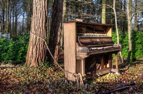 tree piano to a tree 16 haunting pictures of broken abandoned