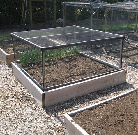 garden bed cover grow and protect your produce with a removable raised