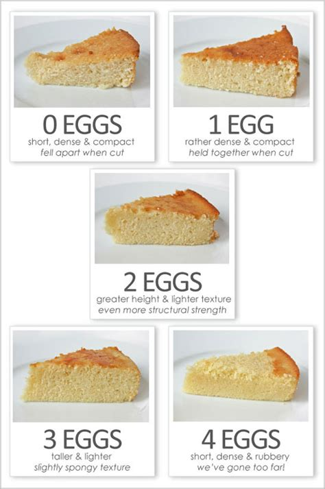 how to bake bread 51 great baking recipes for beginners bread cookbook healthy food books eggsactly baking egg butter cakes and cake