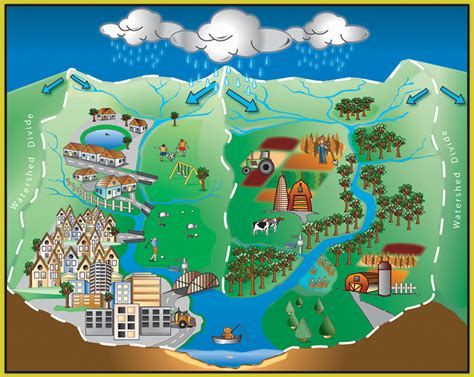 learn about watersheds the white river alliance
