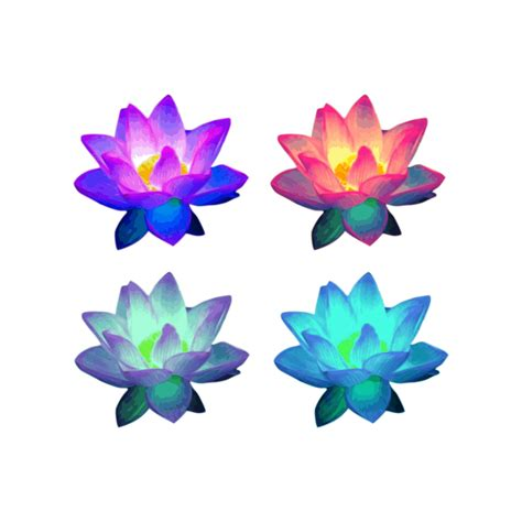 graphic lotus clip lotus clipart drupload free clipart and