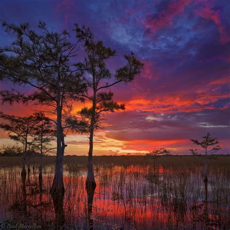 Landscape Photography Florida Florida Landscape Photography By Paul Marcellini