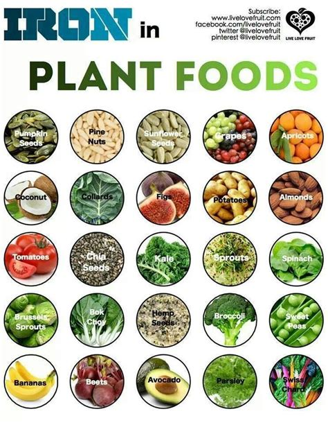 vegetables high in iron fruits and vegetables vegetables and plant based on
