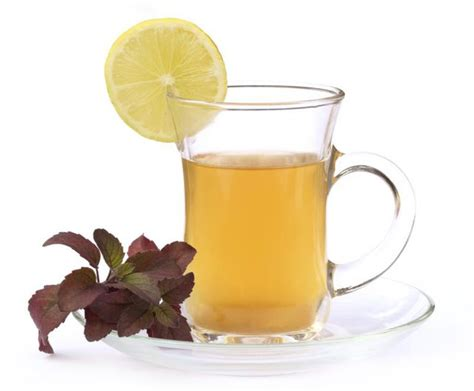 Holy Basil Detox Tea by Tulsi Tea And Pregnancy Livestrong