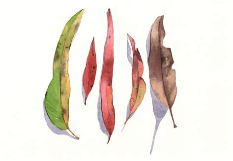printable eucalyptus leaves eucalyptus leaves painting e026 print of watercolor