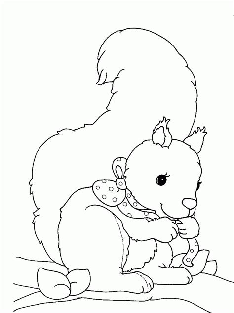 baby squirrel coloring page squirrel coloring pages coloringpages1001 com