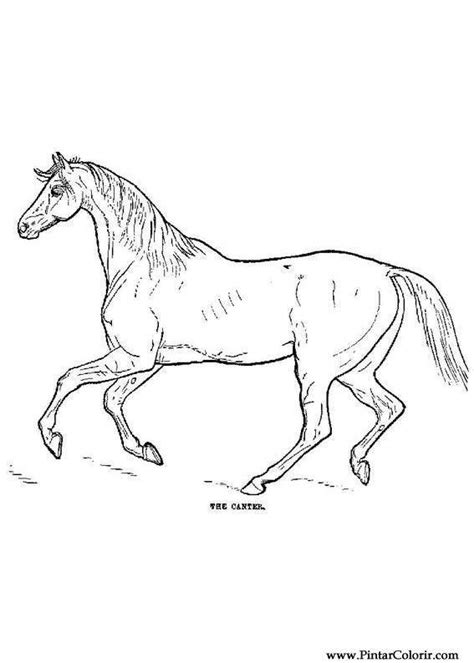 paint horse colouring pages