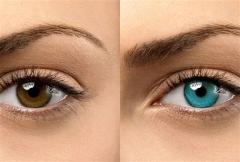 honey eye color how to change your eye color with honey does honey change