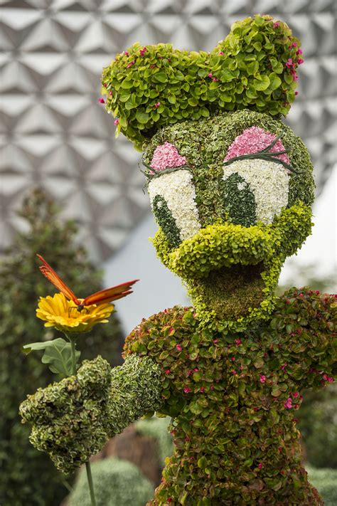 Epcot S International Flower Garden Festival 2015 New Flower Garden Festival