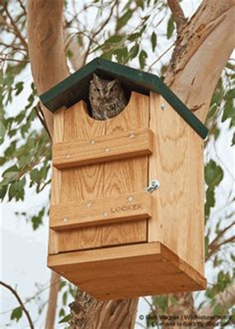 the backyard bird company bird houses bird feeders on pinterest birdhouses