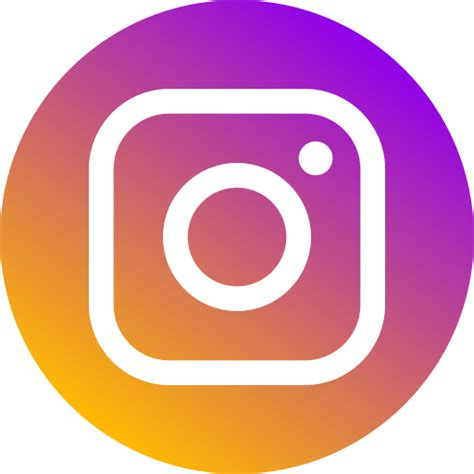 circle instagram logo media network  social icon