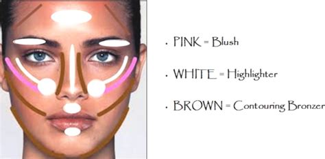 how to a where to and contouring bronzer highlighter for skin makeup for skin skincare