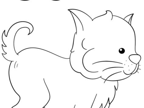 letter c cat coloring page kitty cat coloring pages printable coloring pages c for cat