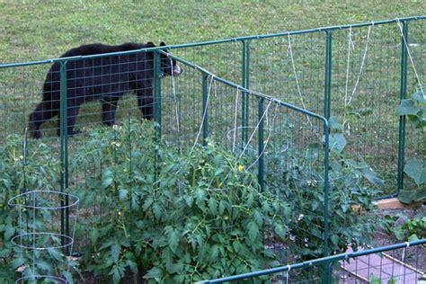 Rabbit Proof Vegetable Garden Garden Fencing Protection From Deer Rabbit Proof Critter