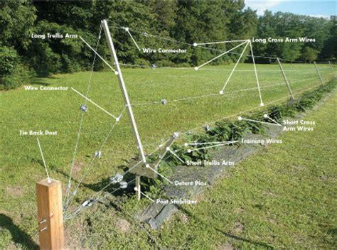 trellis system rca rotating cross arm trellis system trellis growing