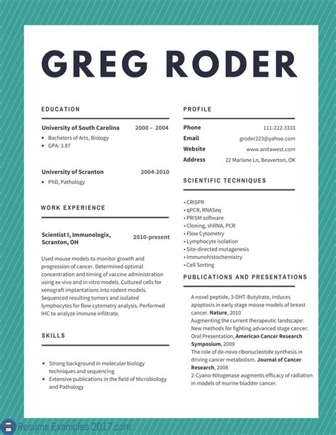 How To Make A Free Resume Online by Best Cv Examples 2018 To Try Resume Examples 2018