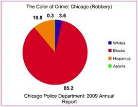 the color of crime the color of crime chicago 2009 occidental dissent