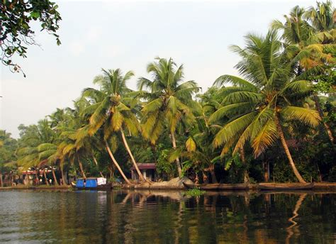 Coconut Island Nostalgic india wallpaper 2013 india wallpapers