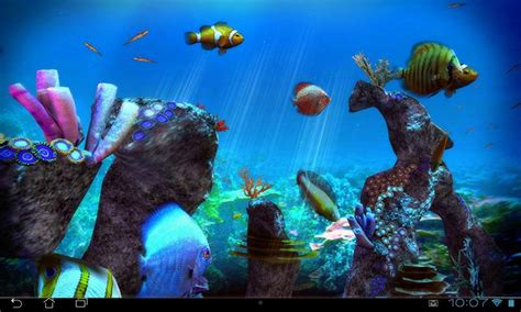 tropical ocean  lwp android apps  google play