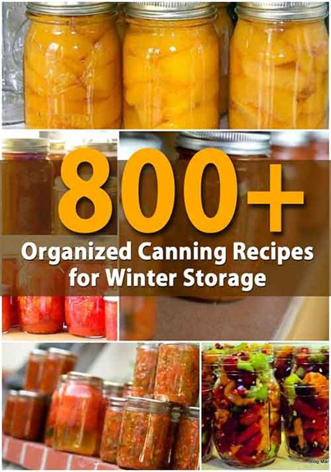 800 organized canning recipes for winter storage lil